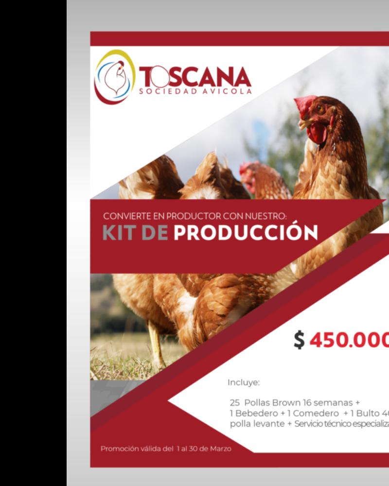 Kit 25 Pollas $ 450.000